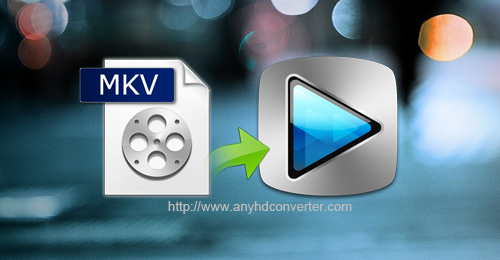 Sony Vegas Pro MKV-Edit MKV in Sony Vegas Pro