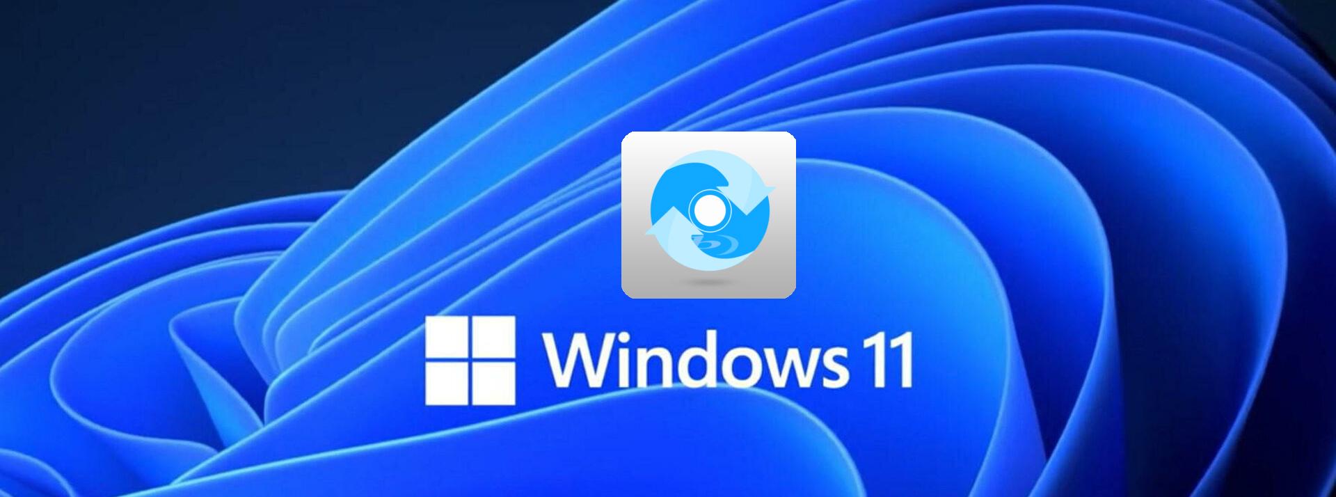Best Windows 11 Blu-ray Ripper